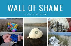 Wall of Shame - Balloons Blow--Releasing balloons endangers and kills our wildlife...especially baby turtles; alternatives are here!