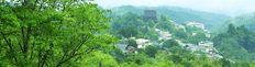 ようおこし、奈良県 吉野山観光協会