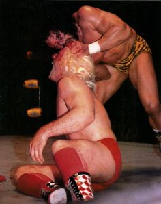 Image result for ric flair jimmy snuka