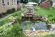Natural Element Fish Pond Make Beautiful Home Scenery