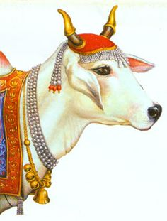 Cattle in religion and mythology