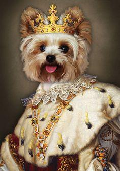 0c15cc4db30c Your pet is a king,Renaissance pet portrait,royal Pet Portrait,custom pet  portrait,pet king,anthropomorphic,pet art,cat painting,dog king