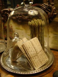 There are so many things you can do with cloches...love the feel of this one..guest room..old letters...