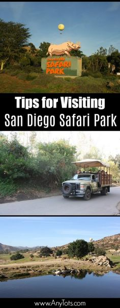 Tips for Visiting San Diego Safari Park. www.anytots.com #SanDiego #SDZsafaripark #travel #familytravel #zoo