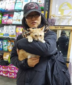 Two Korean women are working hard to save dogs and cats from the meat trade.