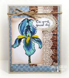 Our Daily Bread Designs Stamp Set: A True Friend, Our Daily Bread Designs Paper Collections: Blooming Garden, Vintage Ephemera, Our Daily Bread Designs Custom Dies:   Layered Lacey Ovals, Pierced Rectangles
