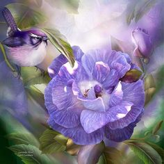 Lavender Rose by Carol Cavalaris  Caressed by sunshine And loving care Lavender Rose How gently and perfectly Your beauty grows.  Lavender Rose prose by Carol Cavalaris © Rose photo courtesy of Brigitte