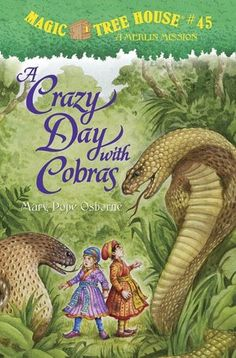 The magic tree house whisks Jack and Annie to India during the Mogul Empire in the 1600s to search for an emerald needed to break a magic spell.