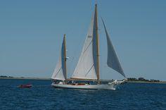 Edgartown Harbor, Sailboat
