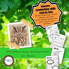 Needing to teach older children to write legible, fluent, clearly formed joined letters?     This resource combines teaching children about Owls with letter writing practice.     They think they are learning about Owls by drawing, completing quizzes, word searches and writing brief stories. They are in fact… developing their joined up writing skills by drawing letter formations, copying key facts, writing sentences and developing their comprehension skills when writing their story on the…