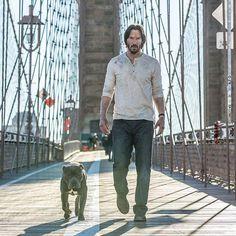 Keanu Reeves returns as John Wick Keanu Reeves John Wick, Keanu Charles Reeves, John Wick Film, Keanu Reaves, National Puppy Day, Film Serie, Photomontage, Cute Photos, I Movie