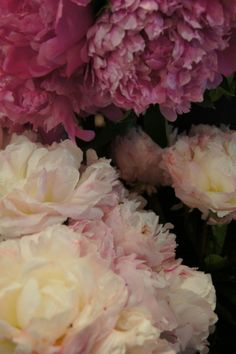 Peonies make me think of my grandfather