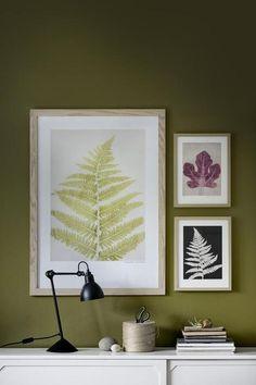 Arte botánico.  Encuentra artista en decor8blog.com