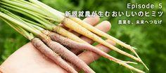 フレッシュグループ水野さんが作る、葉っぱ付きのカラーニンジンこちらも人気の野菜です