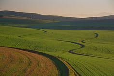 MOORREESBURG - RIEBEEK South Africa, Golf Courses, River, Nature, African, Outdoor, Outdoors, Naturaleza, Outdoor Games