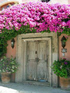 A bougainvillea enhanced door on Lazaro Cardenas in Bucerias, Mexico.