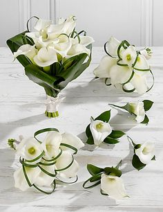 Make a dramatic entrance with this white Calla Lily wedding flowers collection. Make a dramatic entrance with this white Calla Lily wedding flowers collection. Calla Lily Wedding Flowers, Lily Bouquet Wedding, Calla Lily Bouquet, Diy Wedding Flowers, Bridal Flowers, Modern Flower Arrangements, Ikebana, Calla Lily Centerpieces, Barong