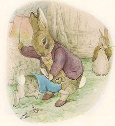Funny Illustration, Illustrations, Beatrice Potter, Classic Books, Cool Art, Bunny, Teddy Bear, Artist, Cute