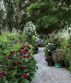15 stunning small cottage garden ideas for backyard landscaping