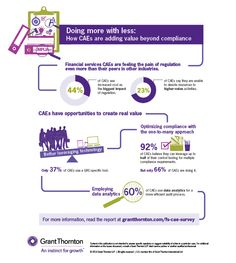 CAE survey infographic financial services