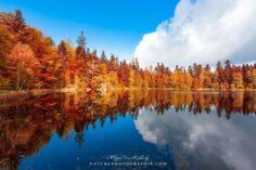 Le Lac de la Maix est l'un des sites les plus agréables des Vosges moyennes. C'est aussi l'un des derniers lacs glaciaires du massif des Vosges.