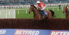 The fabulous Coneygree winning the Cheltenham Gold Cup 2015. First novice in 41 years, made all.
