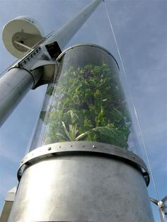 Vertical garden on a boat made entirely out of plastic bottles and recycled waste products.