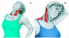 Get a look at the muscles stretched during your yoga practice with these great illustrations!