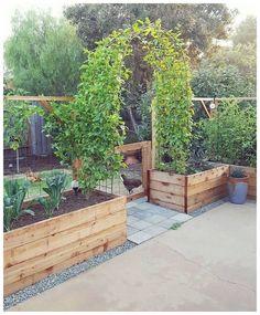 Small Cottage Garden Ideas, Garden Cottage, Small Garden Plans, Small House Garden, Backyard Cottage, Backyard House, Corner Garden, Amazing Gardens, Beautiful Gardens