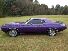 American Muscle Cars… 1970 Plymouth Cuda - Don't mess with auto brokers or sloppy open transporters. Start a life long relationship with your own private exotic enclosed transporter. http://LGMSports.com or Call 1-714-620-5472 today