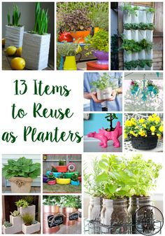 Spring has sprung! Add some color and plant life into any space with these 13 items to reuse as planters today! | Our Three Peas