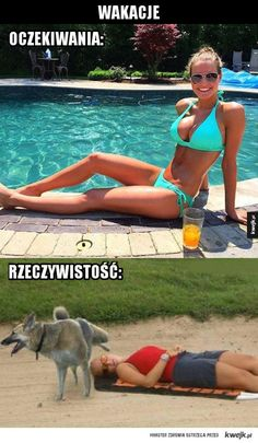 #wakacje #humor #kwejk