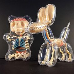 Anatomical Balloon A