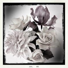 Sugar Posey | Elegant sepia sugar flowers