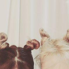 Stephanie Young Hwang @xolovestephi reindeer hair #1d...Instagram photo | Websta (Webstagram)
