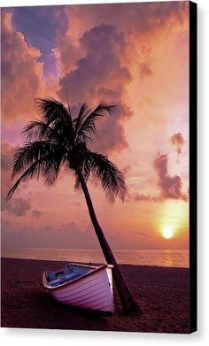 Paradise Palm Tree and Boat At Sunset - Canvas Print - 10.625 x 16.000 / Black / Glossy