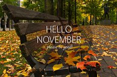 Its Time To Say Good Bye October And Welcome To November With Best Wishes  And Greetings By Saying Hello November, Please Be Good To Me And Please  Nice To Me ...