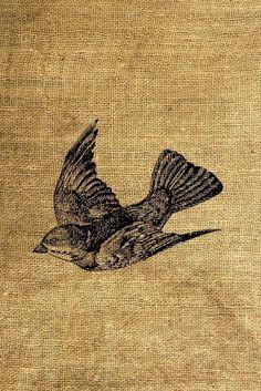 DESCARGA instantánea volando pájaro ilustración Vintage - descarga y hoja Digital Print - transferencia de la imagen - por Room29 - hoja nº 166