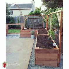 Raised Garden Beds Patio Garden Planning - - Raised Garden Be Backyard Vegetable Gardens, Veg Garden, Vegetable Garden Design, Outdoor Gardens, Garden Trellis, Garden Boxes, Garden Bed Layout, Garden Organization, Raised Garden Beds