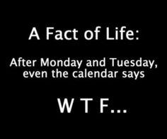 lol...so true omg I never noticed that