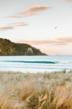 The Ultimate Travel Guide to New Zealand: North Island, Coromandel Peninsula - Calculating Infinity Landscape Photography, Nature Photography, Travel Photography, Beach Photography, Places To Travel, Places To See, Vacation Places, Travel Destinations, New Zealand Travel Guide
