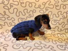 Navy blue knit sweater for dachshunds or small dogs,handmade knitted dog sweater, handmade knitted sweater for dachshund | dachshundknit Dachshund Clothes, Puppy Clothes, Yorkshire Terrier, Sweater Outfits, Small Dogs, Chihuahua, Your Pet, Puppies, Pets