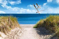 Ab in den Urlaub, am Besten SOFORT! #Ostsee #Strand #Sommer #Sonne #Beach ©DeVIce - Fotolia