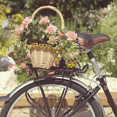 Basket of baby pink roses on bicycle. I love stuff like this!!