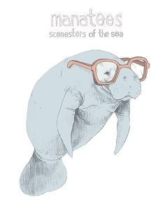 Manatee - Scenesters of the Sea. $15.00, via Etsy.