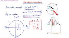 #electrocardiograma Eje eléctrico cardíaco. http://www.albertosanagustin.com/2013/04/ekg-normal-14-eje-electrico-cardiaco.html