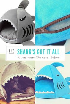 Be the talk of the play date with this super original Shark Be for small dogs! Dog Mom Gifts, Gifts For Dog Owners, Gifts For Pet Lovers, Cat Lovers, Puppy Coats, Puppy Drawing, Happy Animals, Baby Dogs, Diy Stuffed Animals
