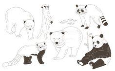 SPAI148, 프리진, 일러스트, SPAI148a, 동물, 에프지아이, 라인, 너구리, 곰, 래서팬더, 팬더, 미어캣, 나뭇잎, 대나무, 반달가슴곰, 북극곰, 일러스트, illust, illustration #유토이미지 #프리진 #utoimage #freegine 19952202