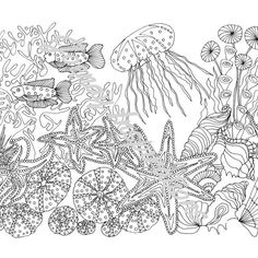 140 Best Underwater Coloring Pages Images Coloring Pages