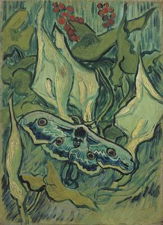 Vincent van Gogh - Emperor moth - Purchased at the Van Gogh Museum in Amsterdam